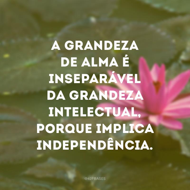 A grandeza de alma é inseparável da grandeza intelectual, porque implica independência.