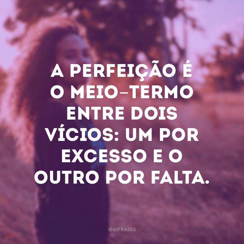 A perfeição é o meio-termo entre dois vícios: um por excesso e o outro por falta.