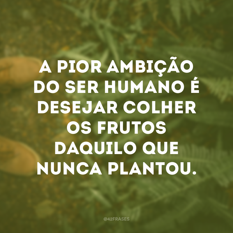 A pior ambição do ser humano é desejar colher os frutos daquilo que nunca plantou.