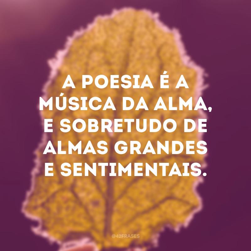A poesia é a música da alma, e sobretudo de almas grandes e sentimentais.