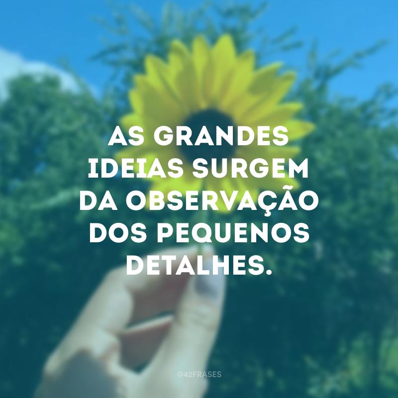 40 Frases De Augusto Cury Que Vão Te Fazer Parar Para Refletir