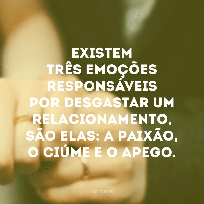 Existem três emoções responsáveis por desgastar um relacionamento, são elas: a paixão, o ciúme e o apego.