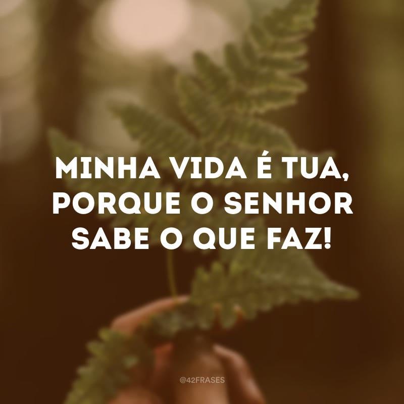 Minha vida é Tua, porque o Senhor sabe o que faz!