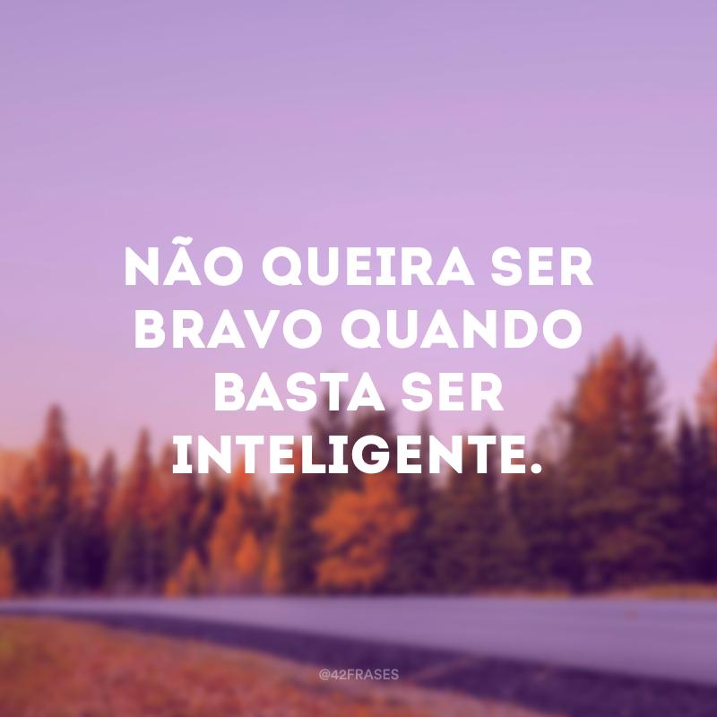Não queira ser bravo quando basta ser inteligente.