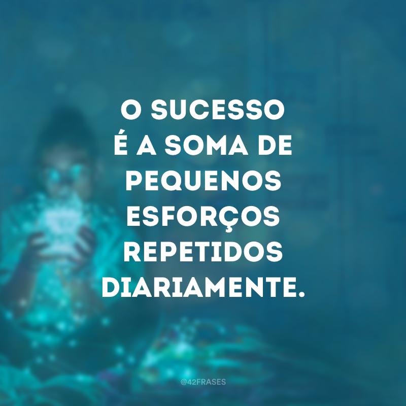 O sucesso é a soma de pequenos esforços repetidos diariamente.