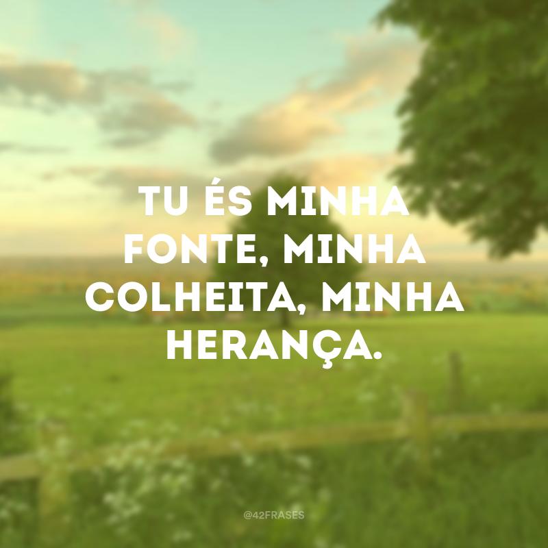 Tu és minha fonte, minha colheita, minha herança.