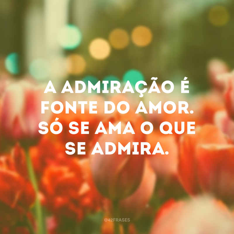 A admiração é fonte do amor. Só se ama o que se admira.