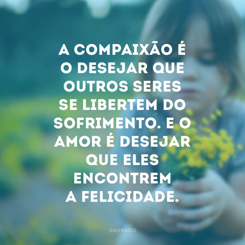 A compaixão é o desejar que outros seres se libertem do sofrimento. E o amor é desejar que eles encontrem a felicidade.