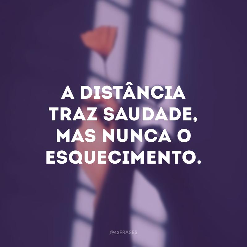 A distância traz saudade, mas nunca o esquecimento.