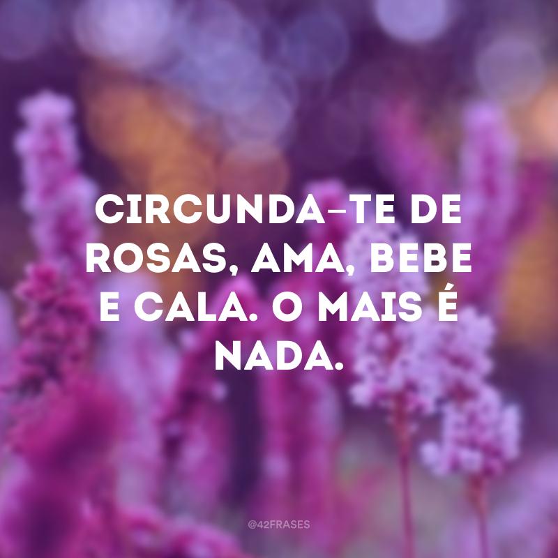 Circunda-te de rosas, ama, bebe e cala. O mais é nada.