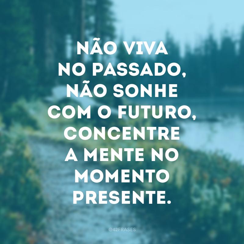 Não viva no passado, não sonhe com o futuro, concentre a mente no momento presente.