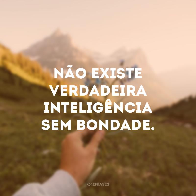 Não existe verdadeira inteligência sem bondade.