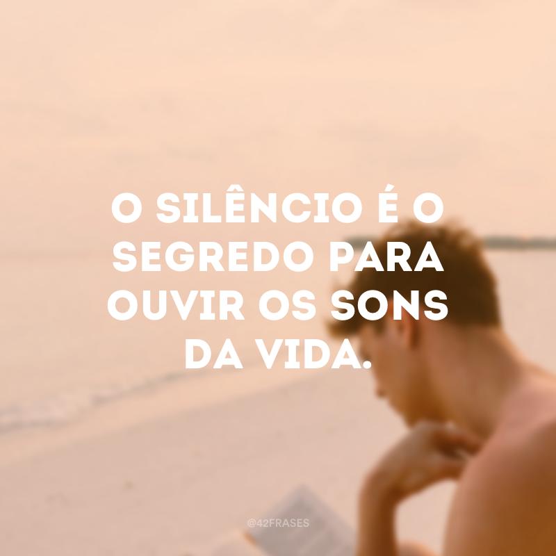 O silêncio é o segredo para ouvir os sons da vida.