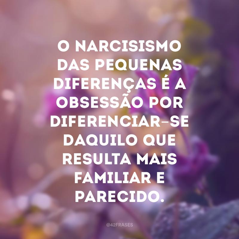 O narcisismo das pequenas diferenças é a obsessão por diferenciar-se daquilo que resulta mais familiar e parecido.