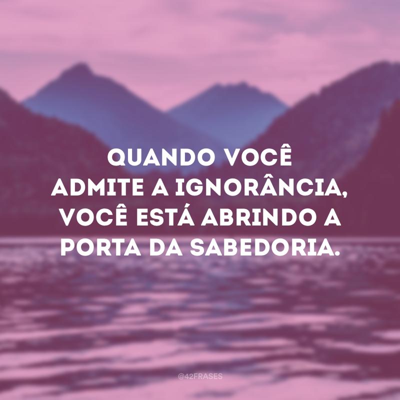 Quando você admite a ignorância, você está abrindo a porta da sabedoria.