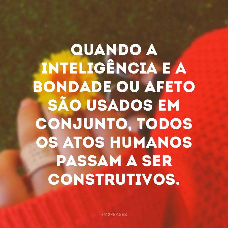 Quando a inteligência e a bondade ou afeto são usados em conjunto, todos os atos humanos passam a ser construtivos.