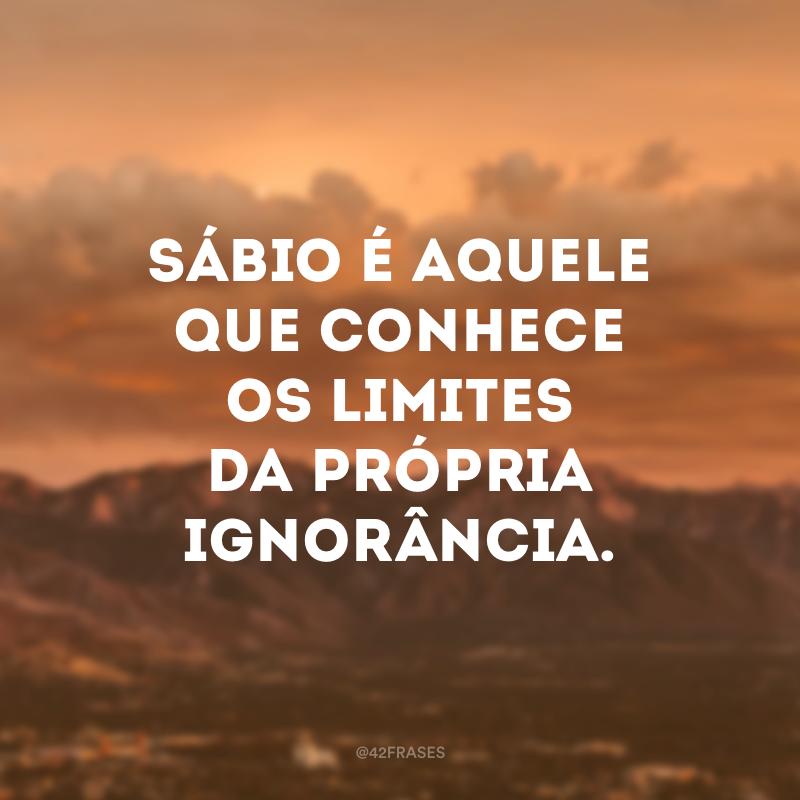 Sábio é aquele que conhece os limites da própria ignorância.