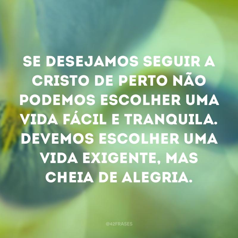 Se desejamos seguir a Cristo de perto não podemos escolher uma vida fácil e tranquila. Devemos escolher uma vida exigente, mas cheia de alegria.