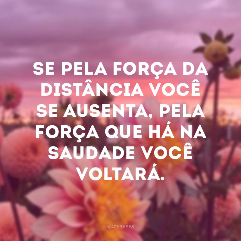 Se pela força da distância você se ausenta, pela força que há na saudade você voltará.