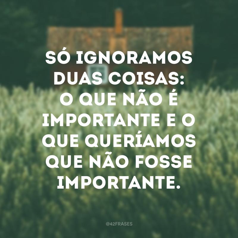 Só ignoramos duas coisas: o que não é importante e o que queríamos que não fosse importante.