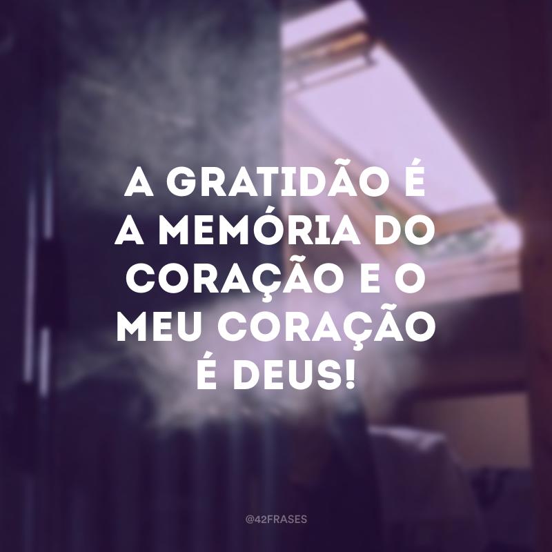 A gratidão é a memória do coração e o meu coração é Deus!
