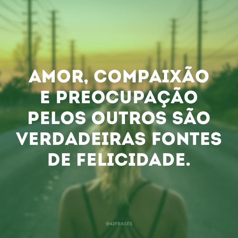 Amor, compaixão e preocupação pelos outros são verdadeiras fontes de felicidade.