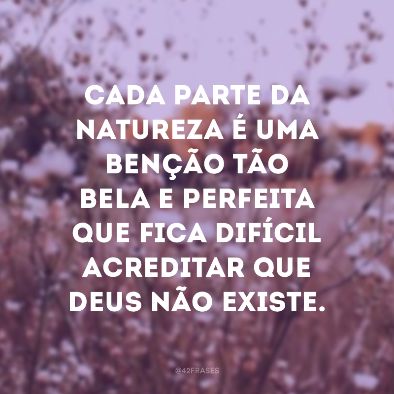 Cada parte da natureza é uma benção tão bela e perfeita que fica difícil acreditar que Deus não existe.
