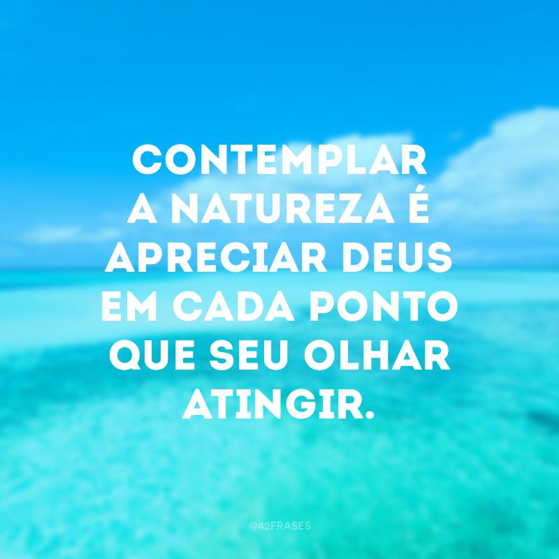 Contemplar a natureza é apreciar Deus em cada ponto que seu olhar atingir.