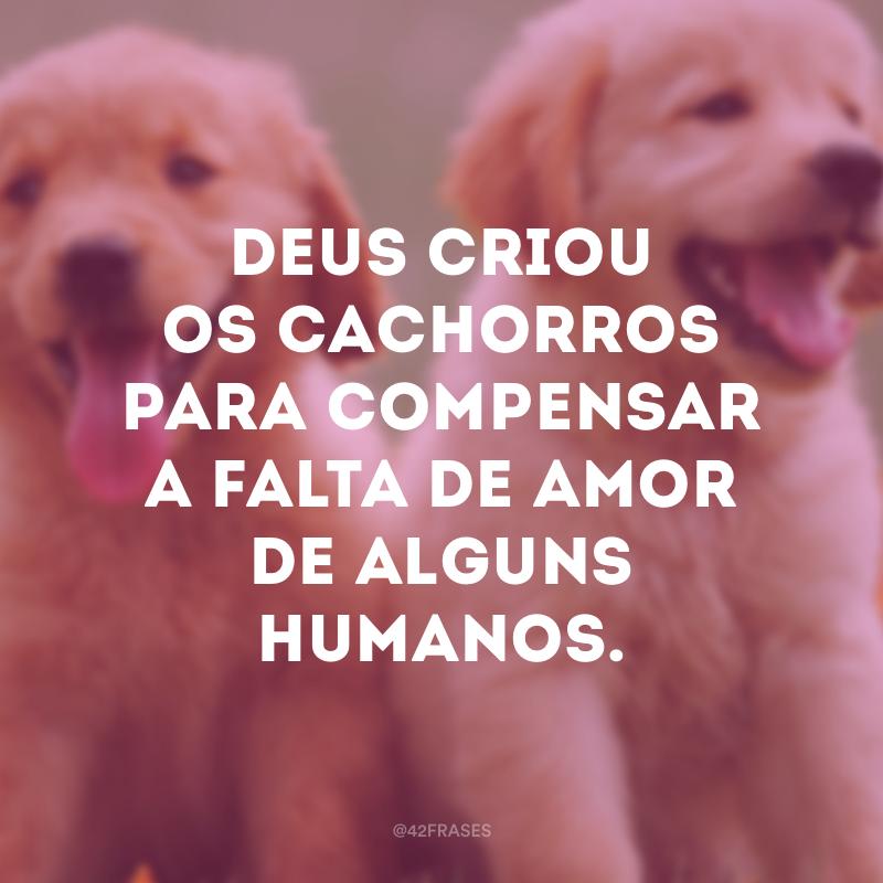 Deus criou os cachorros para compensar a falta de amor de alguns humanos.