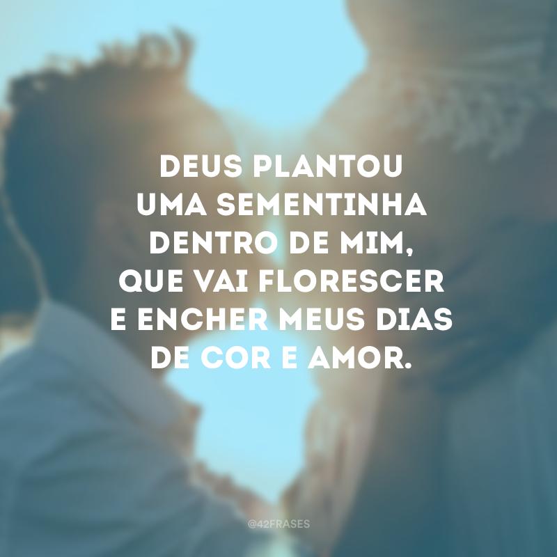 Deus plantou uma sementinha dentro de mim, que vai florescer e encher meus dias de cor e amor.