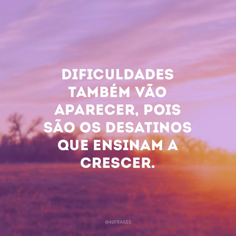 Dificuldades também vão aparecer, pois são os desatinos que ensinam a crescer.