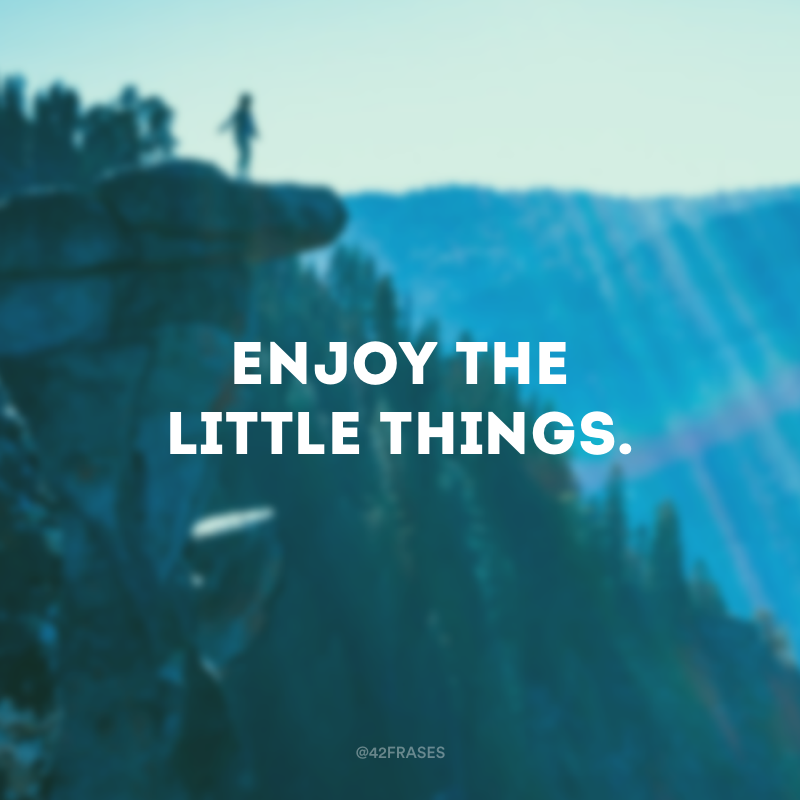 Enjoy the little things. (Aproveite as pequenas coisas.)