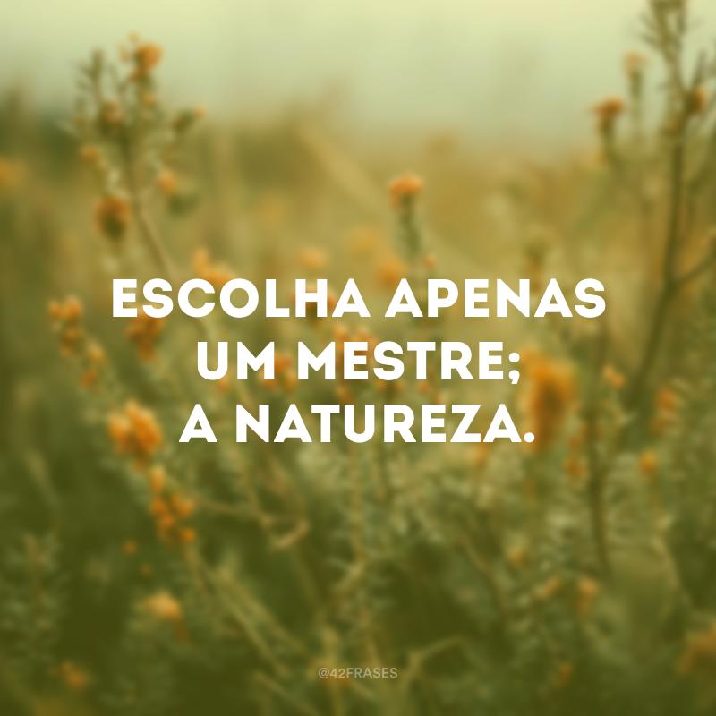 Escolha apenas um mestre; a natureza.