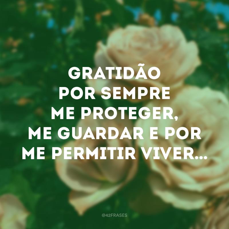 Gratidão por sempre me proteger, me guardar e por me permitir viver…