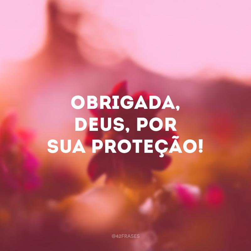 Obrigada, Deus, por sua proteção!