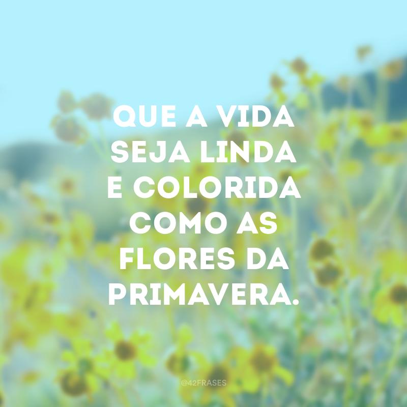 Que a vida seja linda e colorida como as flores da primavera.