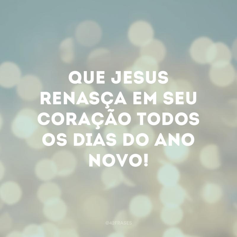 Que Jesus renasça em seu coração todos os dias do Ano Novo!