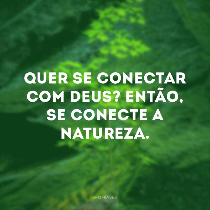 Quer se conectar com Deus? Então, se conecte a natureza.