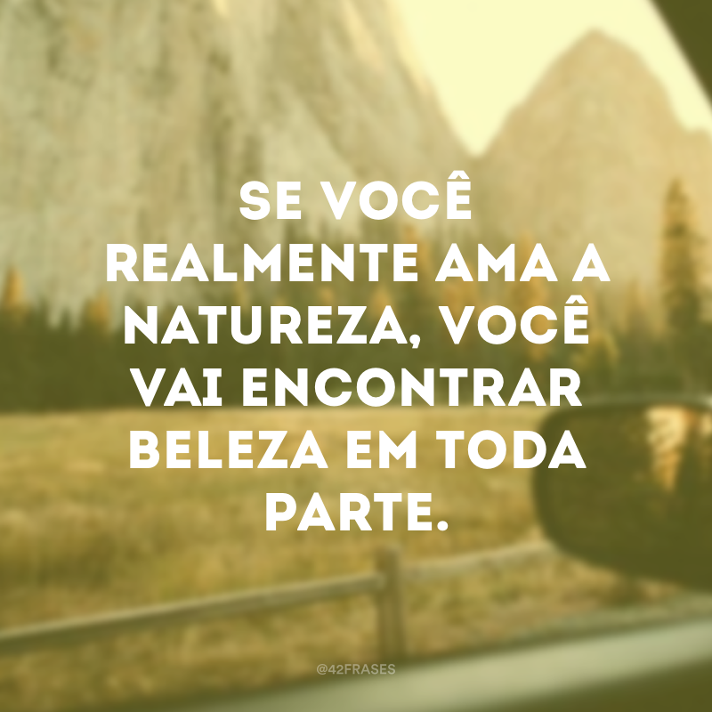 Se você realmente ama a natureza, você vai encontrar beleza em toda parte.