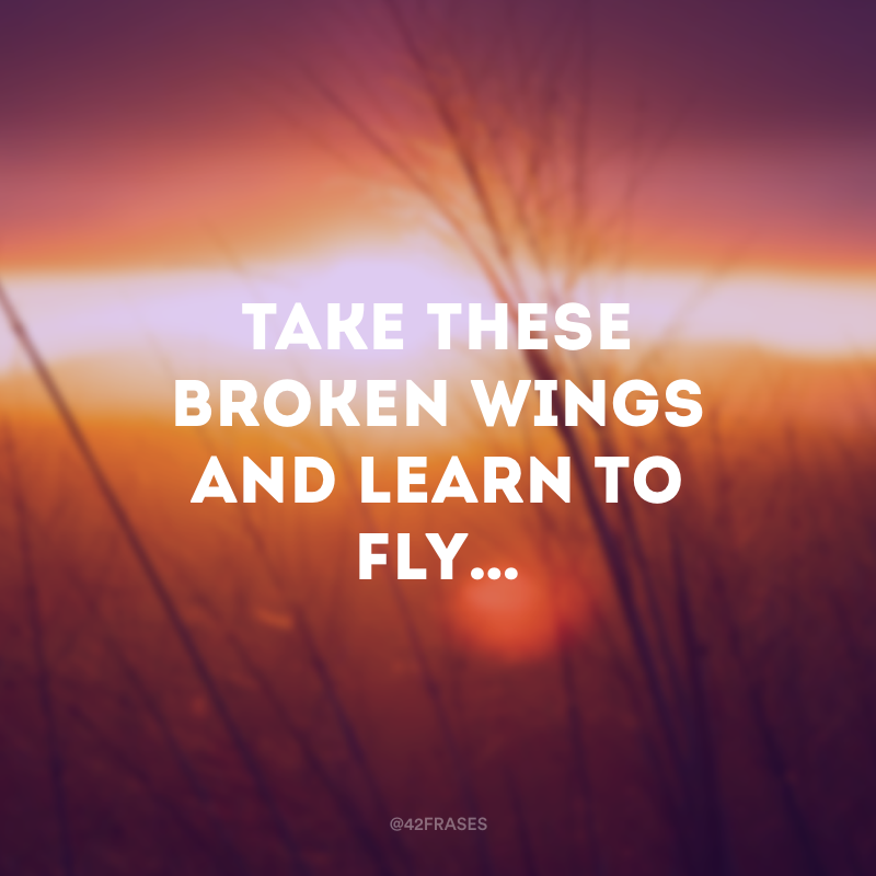 Take these broken wings and learn to fly… (Pegue estas asas quebradas e aprenda a voar...)