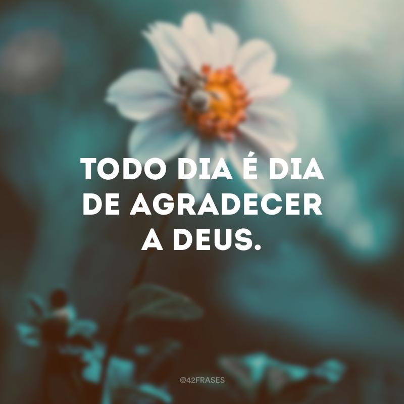 Todo dia é dia de agradecer a Deus.