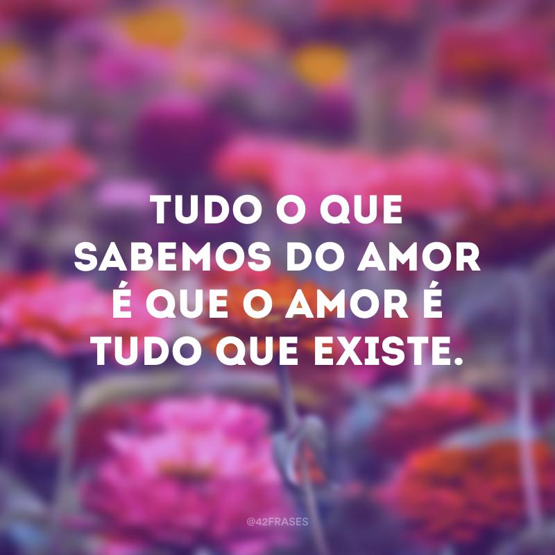 Tudo o que sabemos do amor é que o amor é tudo que existe.