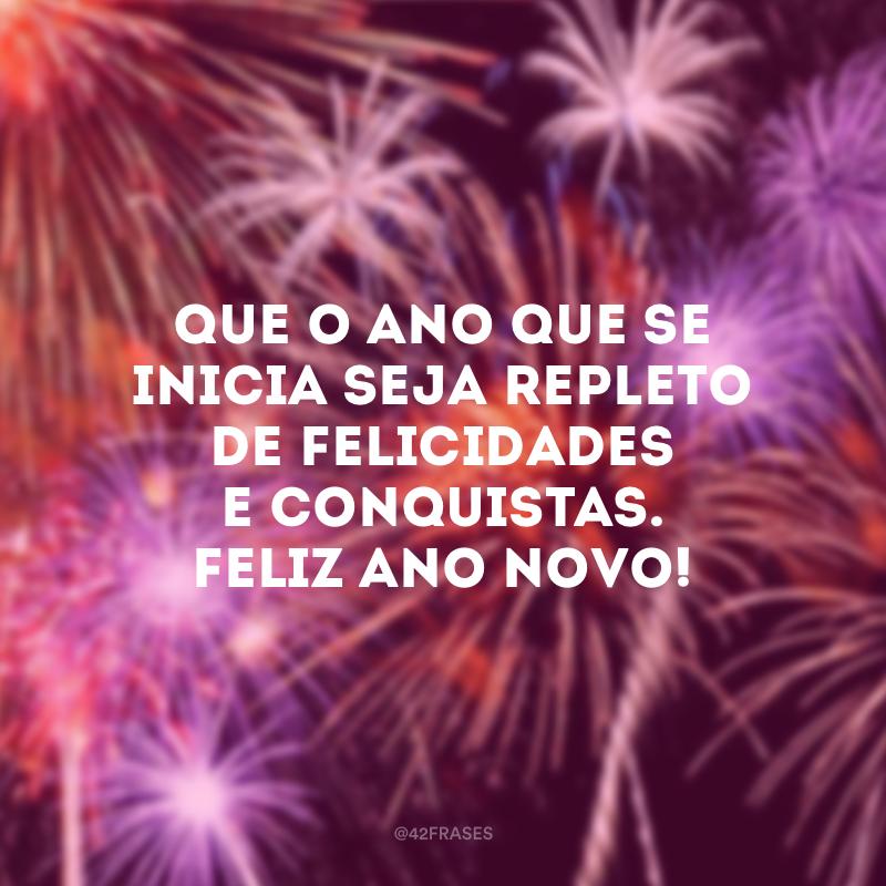 Que o ano que se inicia seja repleto de felicidades e conquistas. Feliz Ano Novo!