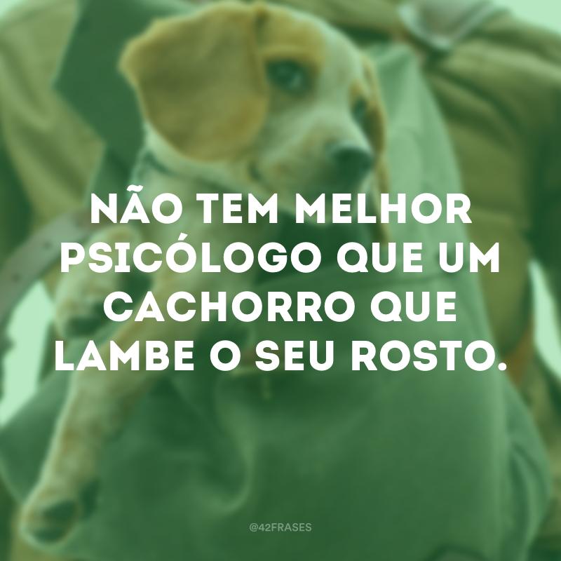 Não tem melhor psicólogo que um cachorro que lambe o seu rosto.