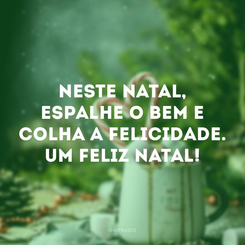 Neste Natal, espalhe o bem e colha a felicidade. Um Feliz Natal!