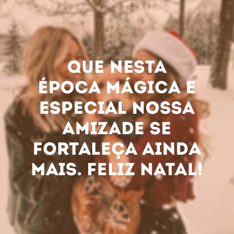 Que nesta época mágica e especial nossa amizade se fortaleça ainda mais. Feliz Natal!