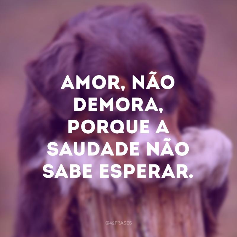 Amor, não demora, porque a saudade não sabe esperar.