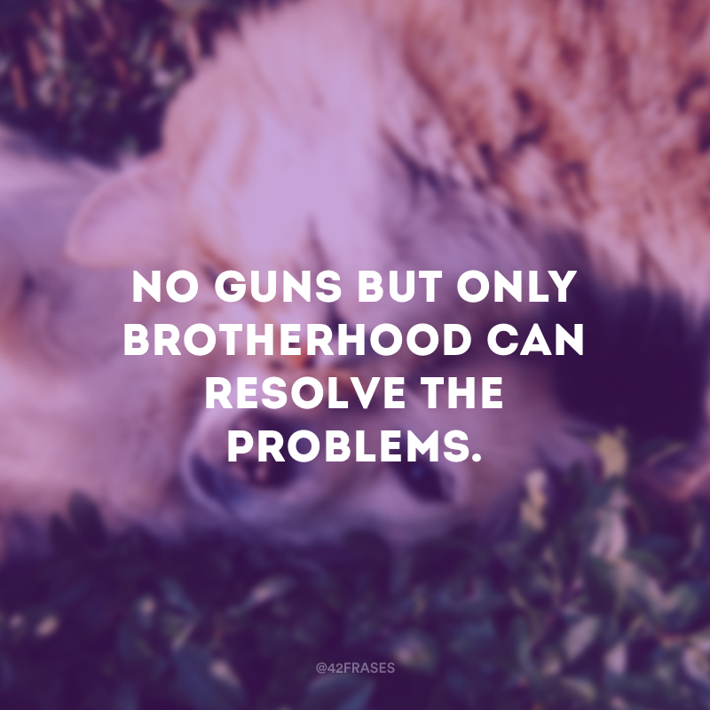 No guns but only brotherhood can resolve the problems. - Nenhuma arma, mas apenas a irmandade, pode resolver os problemas.