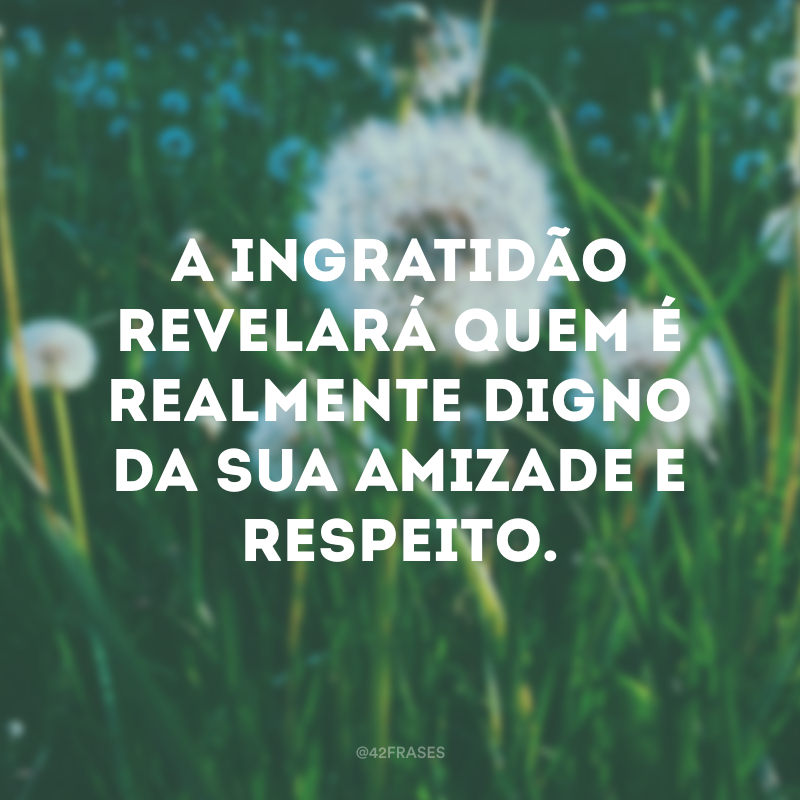 A ingratidão revelará quem é realmente digno da sua amizade e respeito.