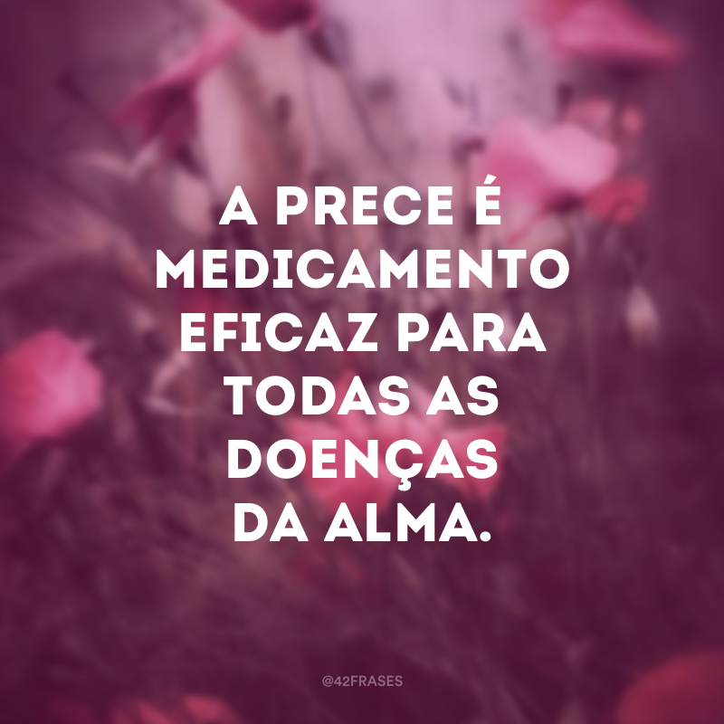 A prece é medicamento eficaz para todas as doenças da alma.